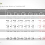 Market segmentation report (consolidated)